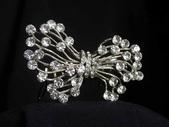 奧地利施華洛水晶鑽飾品:飾品 102.jpg