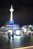 日本が大好き! 近畿+東京自由行:R0011020