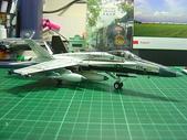 1/72 F/A-18 Hornet NATC:DSC07266.JPG