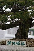 990425土城承天禪寺、板橋藝文特區:tn_IMGP4843.JPG