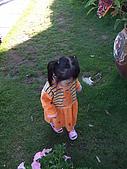 961124-25山上人家、新竹:DSCF0015.JPG
