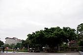990425土城承天禪寺、板橋藝文特區:tn_IMGP4873.JPG