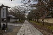 2017.11.19-24關西賞楓-第四天-醍醐寺三重院:ED9A9017.jpg