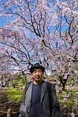 2019.3.32-25東京櫻-第五天:DSC00317.jpg