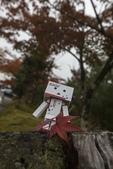 2017.11.19-24關西賞楓-第二天:ED9A8344.jpg