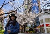 2019.3.32-25東京櫻-第五天:ED9A3831.jpg
