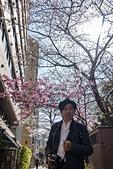 2019.3.32-25東京櫻-第六天:DSC00408.jpg