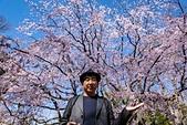 2019.3.32-25東京櫻-第五天:DSC00318.jpg