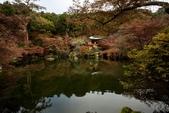 2017.11.19-24關西賞楓-第四天-醍醐寺迦藍:ED9A9044.jpg