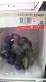日本東京狄斯奈樂園之旅:L1040757.JPG