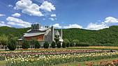 中華電信職工福利委員會數據分會108年5月22日星期三花戀北海道星野TOMAMU‧雲海纜車‧五星鶴雅: