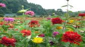 日本東京狄斯奈樂園之旅:L1030918.JPG