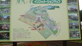 日本東京狄斯奈樂園之旅:L1030919.JPG