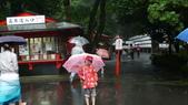 日本東京狄斯奈樂園之旅:L1030690.JPG