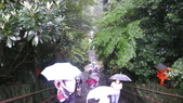 日本東京狄斯奈樂園之旅:L1030708.JPG