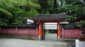 日本東京狄斯奈樂園之旅:L1030714.JPG