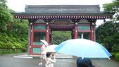 日本東京狄斯奈樂園之旅:L1030743.JPG
