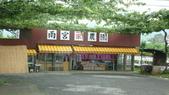 日本東京狄斯奈樂園之旅:L1030853.JPG