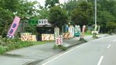 日本東京狄斯奈樂園之旅:L1030861.JPG