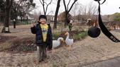 日本九州 02.24.2012:依依不捨的阿弟
