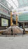 京阪神自由行 06.23.2013:到站了