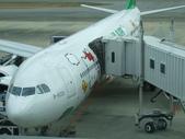 日本九州 02.26.2012:就是坐這班彩繪機回台灣