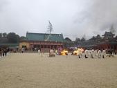 京阪神自由行 01.30~02.07.2015:0203 京都平安神宮一年一度的節分祭