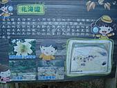 戀戀馬祖之東筥續:DSC02545.JPG
