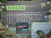 戀戀馬祖之東筥續:DSC02550.JPG