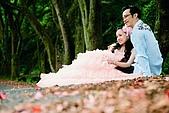 婚紗照:調整大小 DSC_7457.jpg