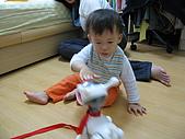 2008/11/15:IMG_2806.JPG