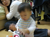 2008/11/15:IMG_2807.JPG
