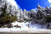 2014合歡山冬雪:2014合歡山冬雪25.jpg