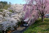 日本南東北行~(二):天童公園-6.jpg