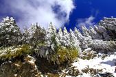 2014合歡山冬雪:2014合歡山冬雪33.jpg