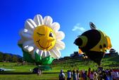 2014台東熱氣球:2014台東熱氣球-7.jpg
