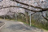 日本南東北行~(二):天童公園-10.jpg