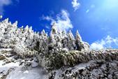 2014合歡山冬雪:2014合歡山冬雪36.jpg