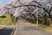 日本南東北行~(二):天童公園-12.jpg