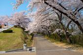 日本南東北行~(二):天童公園-14.jpg