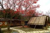 2014露營:2014.02南庄八卦力部落11.JPG