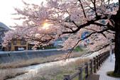 日本南東北行~(一 ):山形縣溫海溫泉-9.jpg