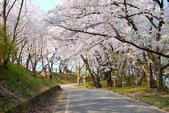 日本南東北行~(二):天童公園-20.jpg