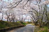 日本南東北行~(二):天童公園-21.jpg