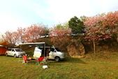 2014露營:2014.02.28洗水山露營區-01.JPG