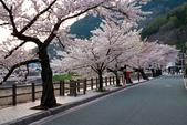 日本南東北行~(一 ):山形縣溫海溫泉-19.jpg