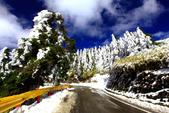 2014合歡山冬雪:2014合歡山冬雪23.jpg