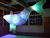 980927幾米星空特展:98.09.27-大海豚