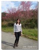 20120228台東太麻里金針山-賞櫻:DSC00977.jpg