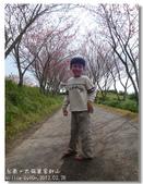 20120228台東太麻里金針山-賞櫻:DSC01040.jpg